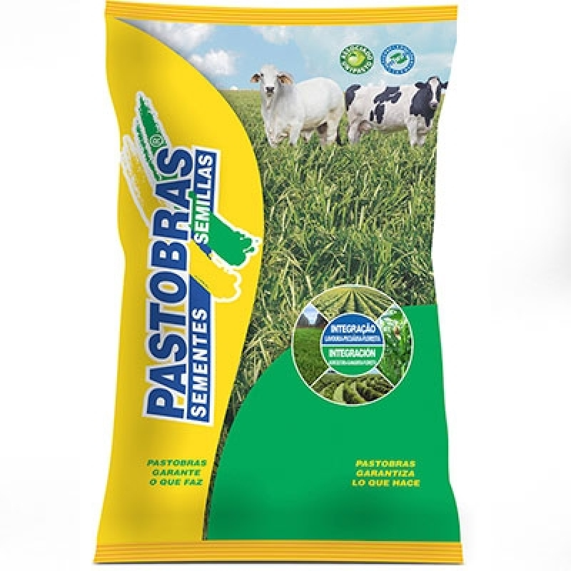 Custo de Saco de Sementes de Pastagem Paraíba - Sementes de Pastagens para Bovino