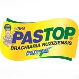 compra de sementes de alta pureza para pastos Paulínia