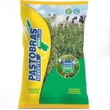 custo de saco de sementes de pastagem Olímpia