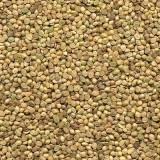 empresa que vende sementes de grama Macapá