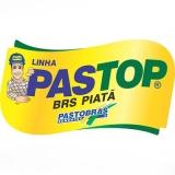 sementes de alta pureza para pastos para comprar Fortaleza