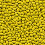 sementes de pastagem incrustadas